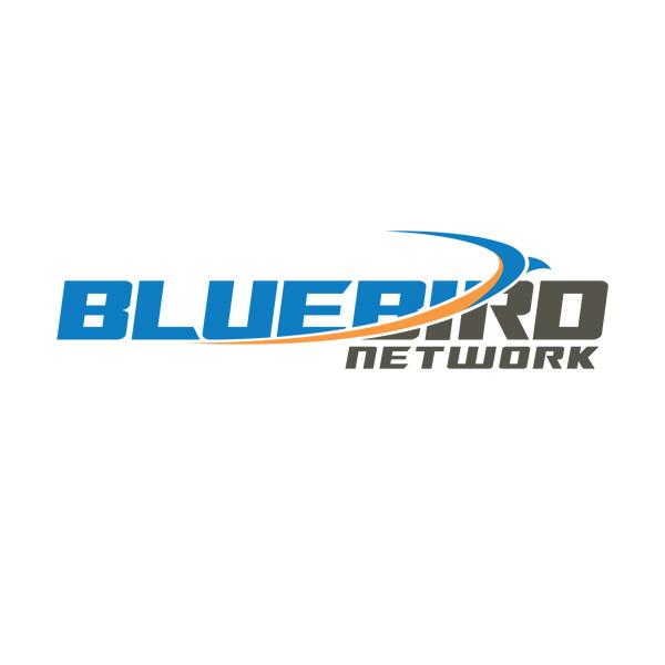 bluebird underground